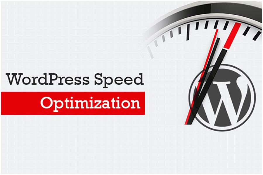 6 Steps to WordPress Speed Optimization with Free or Paid Plugins
