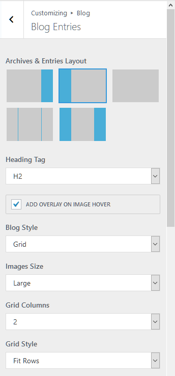 Blog details Customizer settings